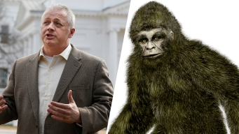 'Bigfoot Erotica' Allegations Are False, Va. Candidate Says