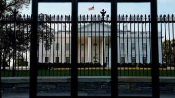 Person Tried To Jump White House Barrier, Arrested