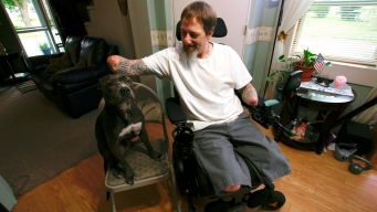 Standing by Ellie: Man's Loyalty to Dog Defies Rare Illness