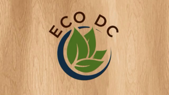 Living Eco-Friendly: Tips from American Univ. Students