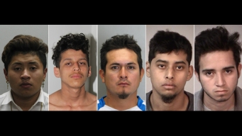 Police: 5 MS-13 Gang Members Arrested in Teen's Murder