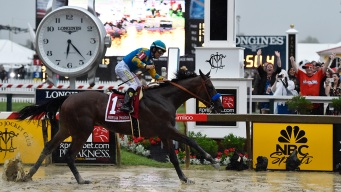 Derby Champ American Pharoah Wins Preakness in Driving Rain