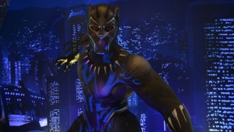 African American Museum Acquires 'Black Panther' Items