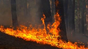 Virginia Officials Issue Warning as Wildfire Season Begins