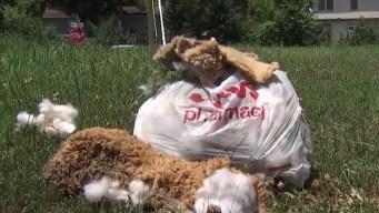 Roadside Memorial for Teen Vandalized in Spotsylvania County