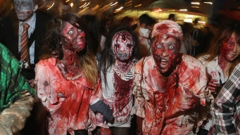 Man Thought World Was Ending, Rammed Cars to Flee 'Zombies'