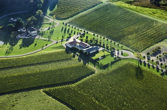 Wine Wednesdays: Breaux Vineyards