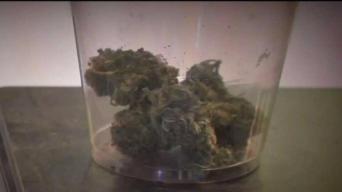 Medical Marijuana Dispensaries Can't Be Near Schools