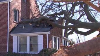 Strong Winds Cause Widespread Damage