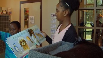 Tales for Tails: Texas Shelter's Reading Program Helps Kids and Adoptable Pets Alike