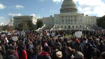Thousands of DC-Area Students Walk Out for Gun Protests