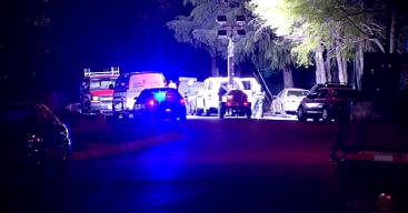 Woman Dead, 4 Men Hurt in Forestville Shooting