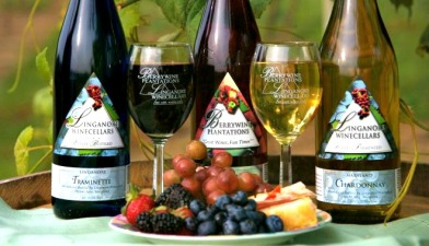 Wine Wednesdays: Linganore Winery