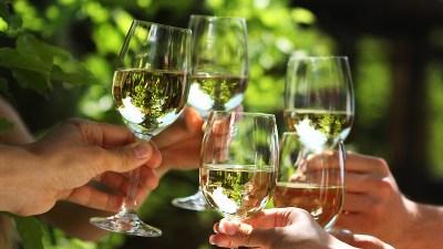 Vendemmia Wine Festival in Wilmington