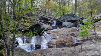 Trails, Scales and Waterfalls at Cunningham State Park