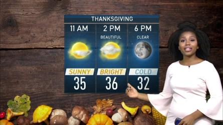 <p>Storm Team4's Somara Theodore has your Thanksgiving week forecast.</p>