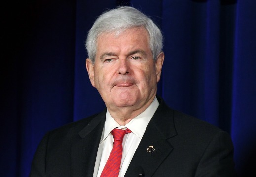 Newt to Mitt: Pick Conservative Platform