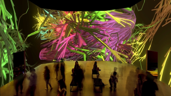 artechouse s new nature exhibit in dc mesmerizes with light