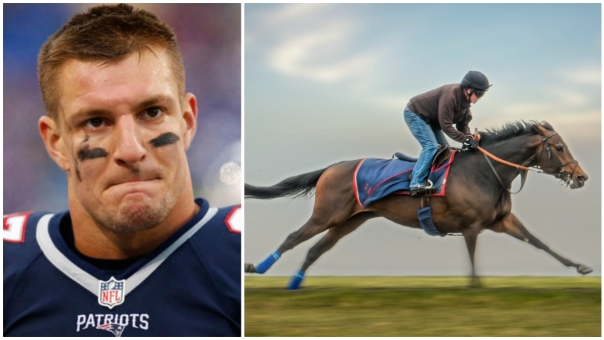 NFL's Gronkowski Buys Stake in Horse Who Shares His Name