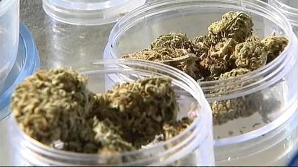Medical Marijuana Delay