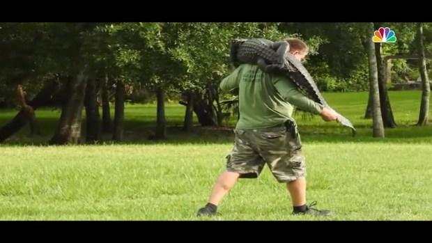 Florida Man Kicks Alligator to Save Daughter's Dog | NBC4