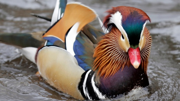 Top Tri-State News Photos