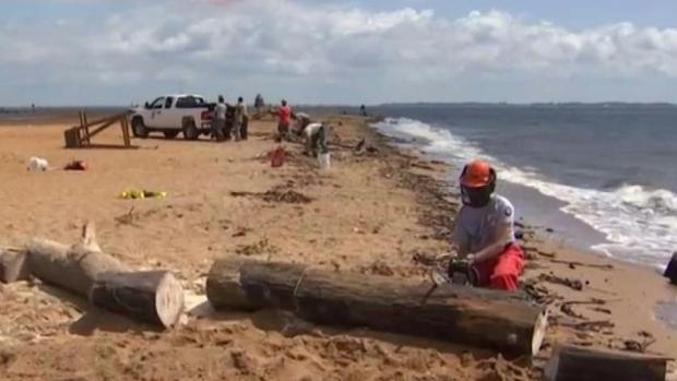 Crews Clear Debris Along Chesapeake Bay