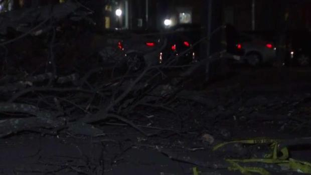 Falling Trees Bring Down Power Lines
