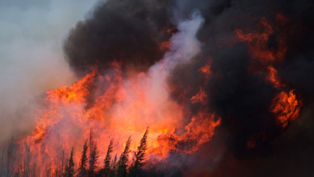 [NATL]Canada Wildfire: Images Show Devastation in Fort McMurray