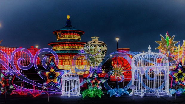 Photos: LightUP Fest Brings 1 Million Lights to Loudoun Co.