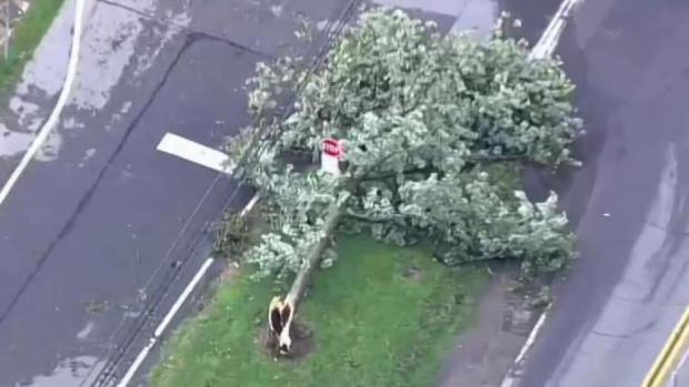 [DC] 'It Felt Like a Tornado:' Storm Damages College Park Homes