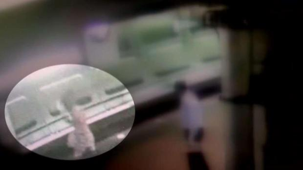 Suspect Jumped Off Metro Platform in Bid to Escape
