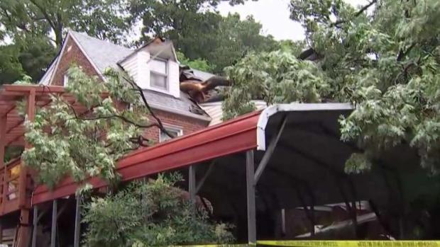 Tree Crashes Onto DC Home