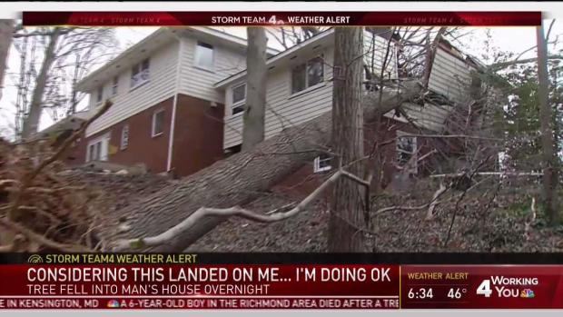 Tree Crashes Onto Va. Couple's Bed as They Sleep