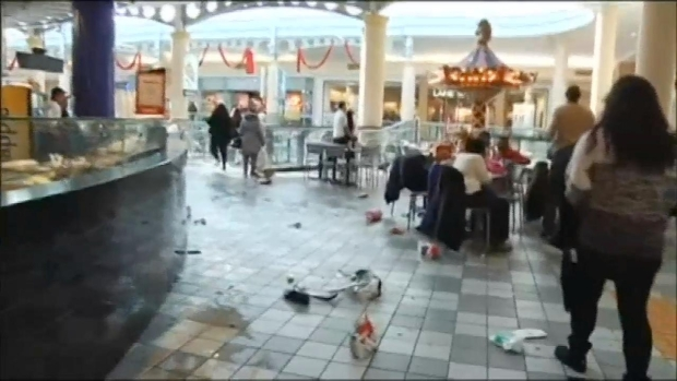 [NY] EXCLUSIVE VIDEO: Chaos at Long Island Mall
