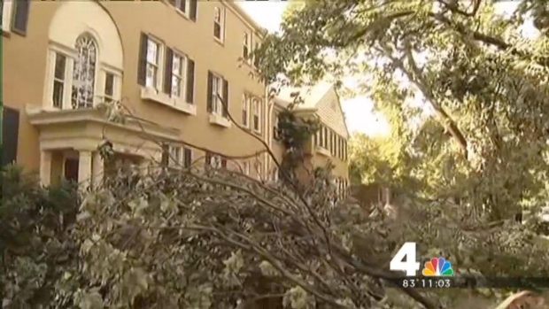 [DC] Tree Crashes Through Alexandria Home