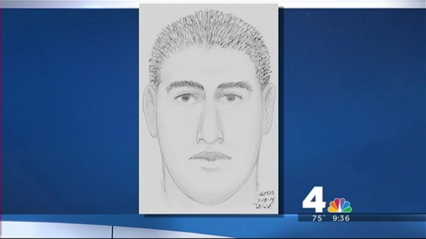 [DC] Sketch of Trail Attacker Released
