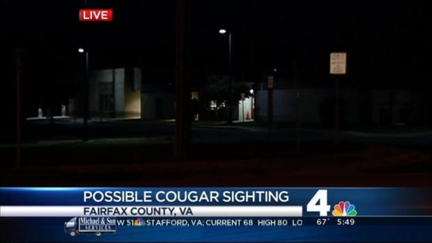 [DC] Possible Cougar Sighting Reported Near School