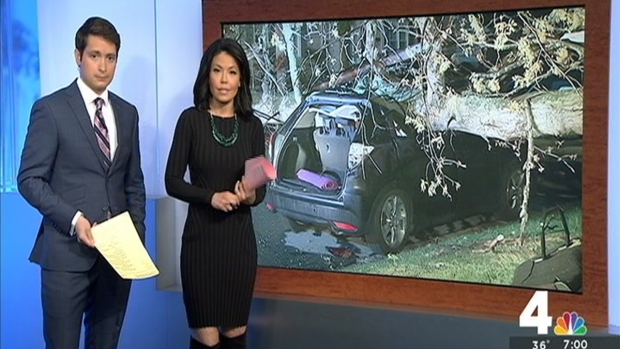 [DC] Downed Tree Crushes Car, Injures People Inside