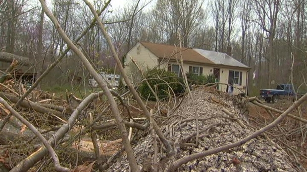 Day 2 of Storm Damage Clean Up in Fauquier County