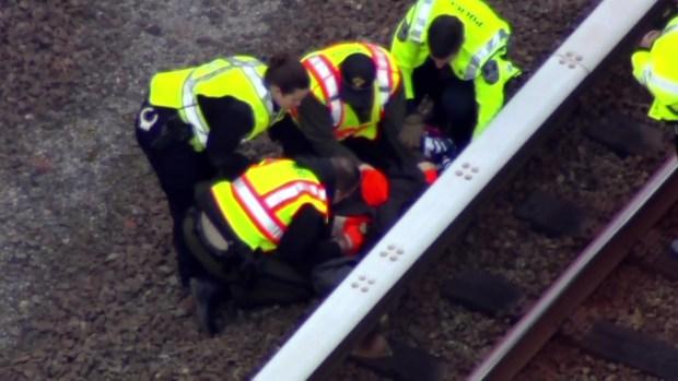 Injured Eagle Rescued on Metro Tracks