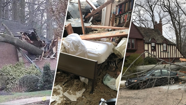 Photos: DC 'Windmageddon' Sends Trees Crashing Onto Homes