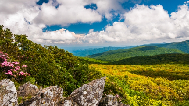 Top 10 Day Trips Less Than 100 Miles From D.C.