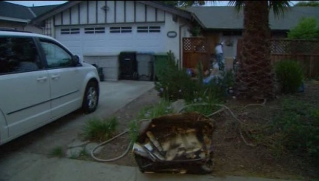 [BAY] Dozens of Cats Killed in Overnight Fire