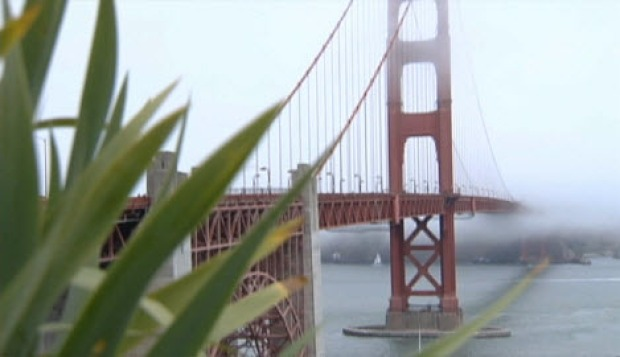 [BAY] $76M Suicide Barrier OK'd for Golden Gate