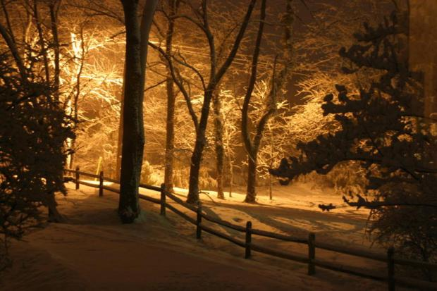 iSee: The Best Snowstorm Pix