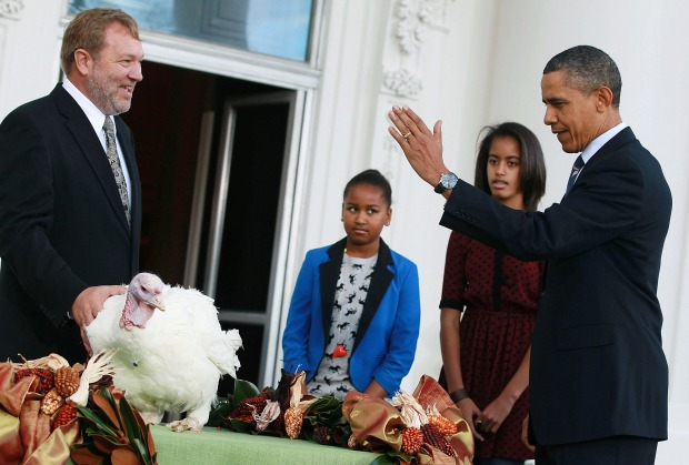 Entrée? No Way! Turkeys Get Presidential Pardon