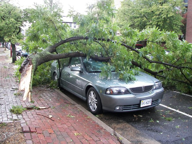 Viewer Images From Aug. 5 Storm