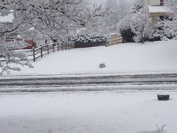 PHOTOS: Tuesday Snow Blankets Parts of DC Area