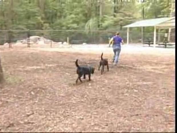 [DC] New Dog Park in Bethesda